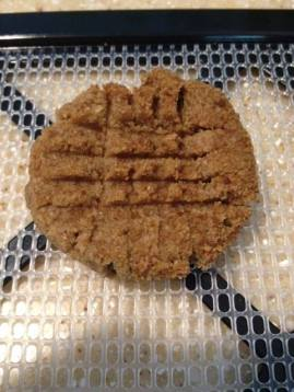 Thrive Kitchen, Raw Ginger Snaps, Pic V