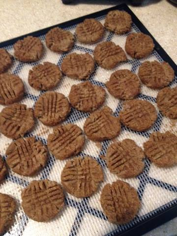Thrive Kitchen, Raw Ginger Snaps, Pic VI